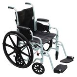 Pollywog Wheelchair Transport Chair
